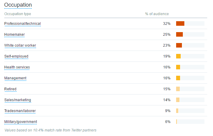 twitter audience age category
