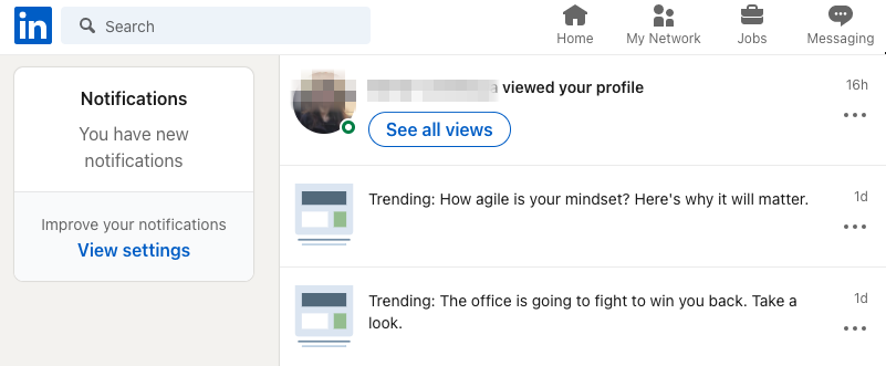LinkedIn profile visit-1