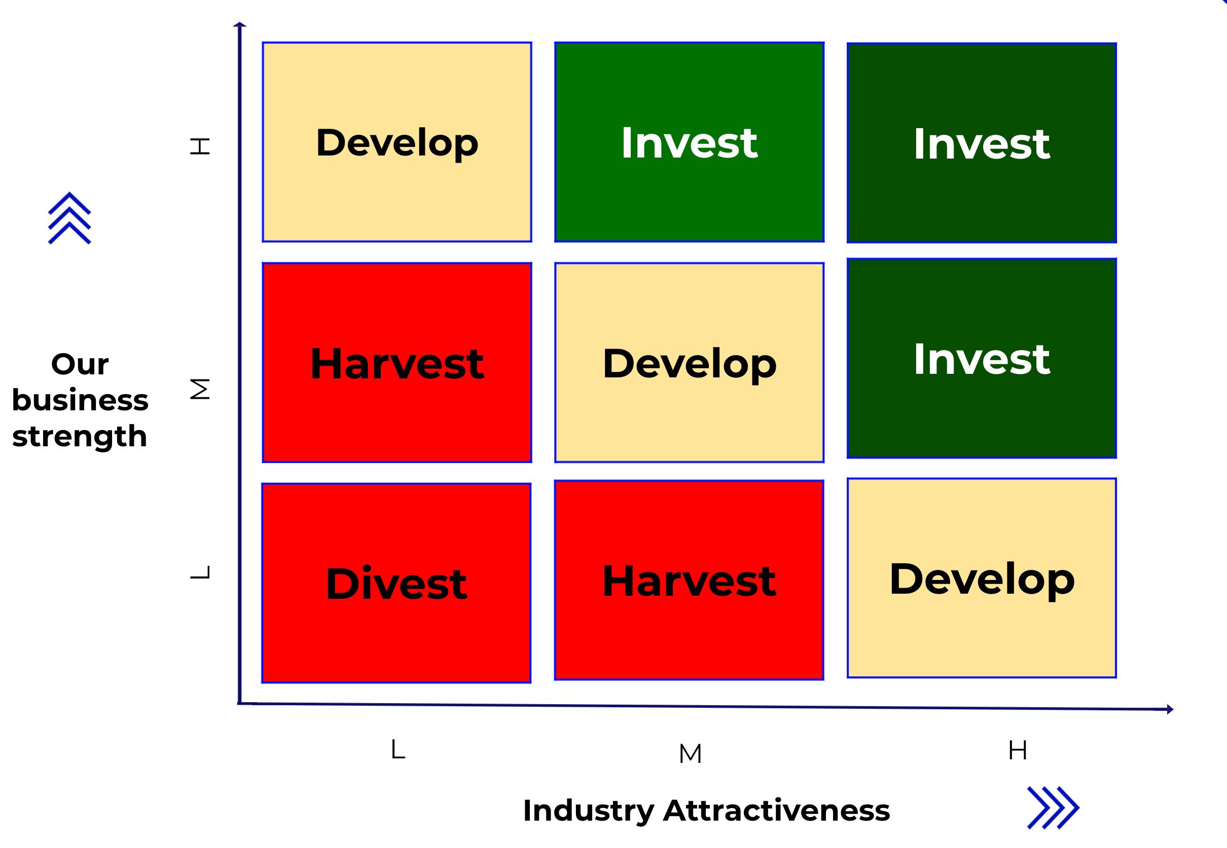 McKinsey Policy Matrix